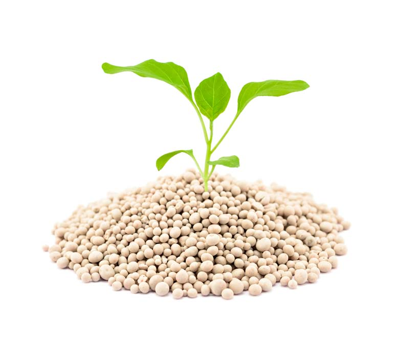 fertilizer_shutterstock_423602668_2